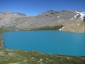 Michele Lakes