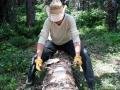 Skinning logs