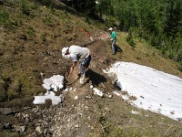 Cutting new trail bed
