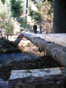 New bridge across Baril Creek