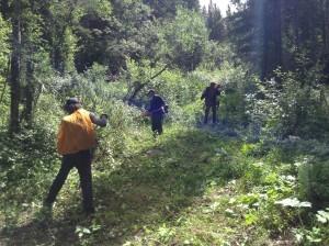Re-establishing the trail corridor