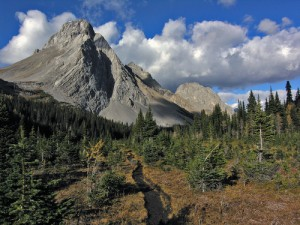 Mt Birdwood WIlliam Marler 2006