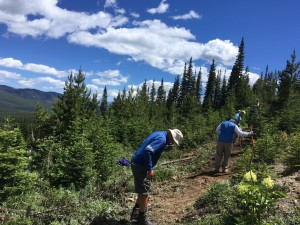 Building new trail