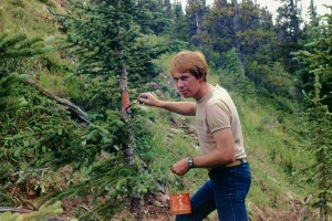 How NOT to Blaze - The author blazing too low on the wrong kind of tree, circa 1978 (before he became a pro)