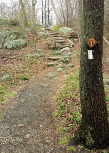 White blaze and homemade reassurance marker on the Appalachian Trail