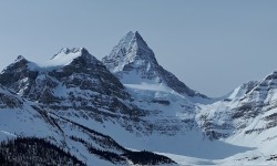 mt_assiniboine