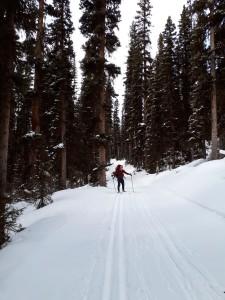 Mt. Shark Ski Area on the Way to Bryant Creek Hut