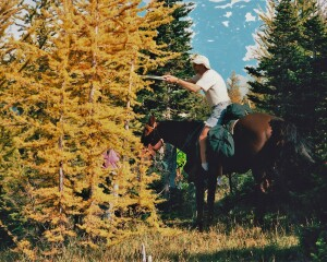 Chris Morrison on his horse Star carefully pruning larch along the GDT on the Cataract Plateau in 1998
