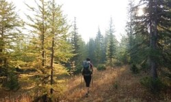 11 GDT Yoyo hiker Tara Frey-Durston backpacks by larch