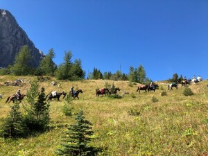 Day 1 - The majestic horse pack train spreads out in the high country under clear blue skies - what a sight!