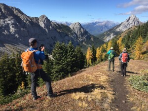 The annual fall pilgrimage to see and photograph subalpine larch now attracts thousands of people to the Canadian Rockies